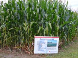 Get Personalized Advice About Crops at the Farm Science Review